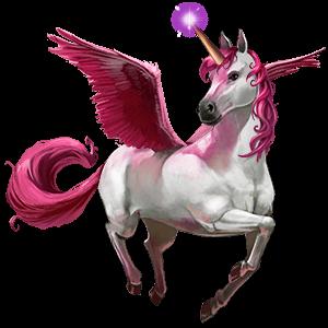 divine horse bellacorn