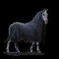 unicorn mors