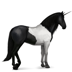riding unicorn friesian black