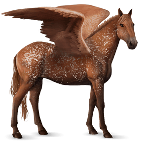 riding pegasus appaloosa chestnut snowflake