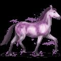 gemstone horse amethyst