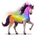 horse of the rainbow secret rainbow
