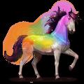 horse of the rainbow secret rainbow