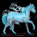 horse of the rainbow lovely blue