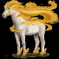 winds horse euronotus