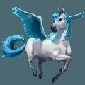falabella horse klein