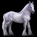 divine horse greyfell