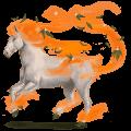 winds horse libonotus