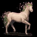 seasons horse spring
