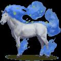 winds horse thracius