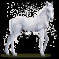 water horse snowflake