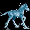 water horse ocean