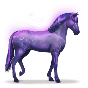 horse of the rainbow devoted indigo