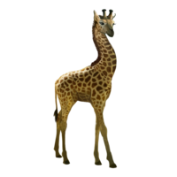 compagnon-girafe.png