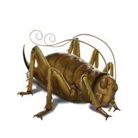 compagnon-weta-off.png