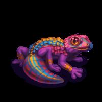 companion-gecko-2.png