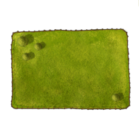 medium meadow